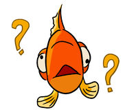 Cartoon color animal expression fish forget Royalty Free Stock Images
