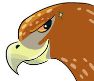Cartoon color animal expression hawk cool Royalty Free Stock Images