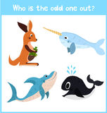 Cartoon colorful background of Education to find 1 extra pet kangaroo of the inhabitants Stock Images