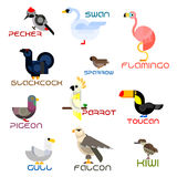 Cartoon colorful flat birds set Stock Photo