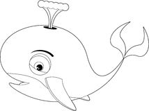 Cartoon Colour in Whale Royalty Free Stock Images