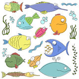Cartoon comic fishes Stock Photo