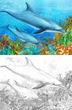 Cartoon coral reef with dolphins - with coloring page Stock Photo