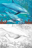 Cartoon coral reef with dolphins - with coloring page Royalty Free Stock Photo