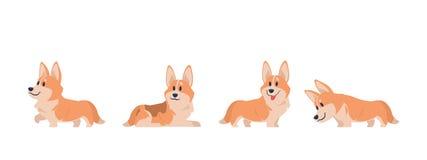 Cartoon corgi. Flat puppy for stickers, postcards, prints and posters, corgi home pet. Vector set of cartoon corgi vector illustration
