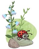 Cartoon corner design with ladybug and flowers. All elements are grouped together logically and easy to edit stock illustration
