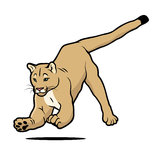 Cartoon cougar Stock Images