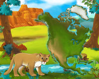 Cartoon cougar with continent map Stock Photo