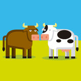 Cartoon Couple Of A Bull And A Cow Stock Photo