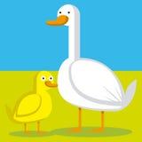 Cartoon Couple Of A Duck And A Bacy Duck Stock Photos