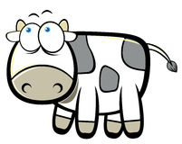 Cartoon cow Stock Photography