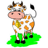 Cartoon cow with a bell. Illustrations cartoon cow with a bell royalty free illustration
