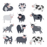 Cartoon cow character. Milk cow bull with calf bull buffalo. Different cow dairy farm beef, nature domestic farm animal. Cartoon cow action , with cute lovely Royalty Free Stock Images