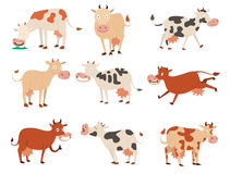 Cartoon cow characters Royalty Free Stock Photo