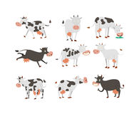 Cartoon cow characters Stock Image