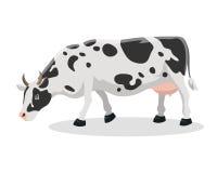Cartoon cow farm animal vector illustration. Royalty Free Stock Images