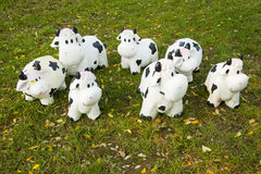 Cartoon cow. On the grass, a group of lovely cartoon cow Royalty Free Stock Photography