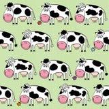 Cartoon cows. Background,  illustration. Royalty Free Stock Photo