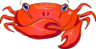 Cartoon crab Stock Images