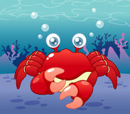 Cartoon crab Stock Photos