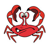 Cartoon crab. Crab,cartoon picture isolated on white background,children illustration Stock Photos