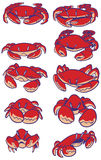 Cartoon crabs vector clip art set. A set of vector cartoon crabs. Illustration drawn in a simple style stock illustration