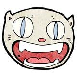Cartoon crazy cat face Royalty Free Stock Photo