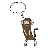 cartoon crazy monkey with thought bubble Stock Image