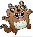 Cartoon Crazy Ugly Chipmunk Royalty Free Stock Photo