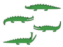 Croco Stock Photography