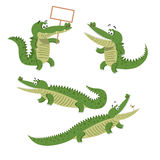 Cartoon Crocodiles Isolated Illustrations Set Stock Photography