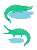 Cartoon crocodiles Royalty Free Stock Images