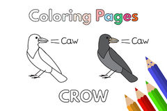 Cartoon Crow Coloring Book. Cartoon crow illustration. Vector coloring book pages for children Stock Photo