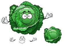 Cartoon crunchy cabbage vegetable character. Crunchy fresh cabbage vegetable cartoon character with sappy bright green leaves, for vegetarian food or agriculture Stock Photos