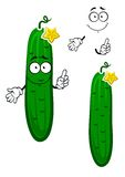 Cartoon crunchy cucumber vegetable character. Crunchy green cucumber vegetable cartoon character with scattered small prickles, curly stem and yellow flower on Royalty Free Stock Image