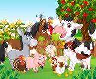 Cartoon Cute Animal Stock Photography