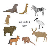 Cartoon cute Animals vector set. Isolated vector illustration hand-drawn style. Sticker, card, print, postcard, poster, background Royalty Free Stock Photos