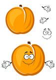 Cartoon cute apricot fruit character with fuzzy Royalty Free Stock Photos