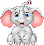 Cartoon cute baby elephant isolated on white background Stock Photos
