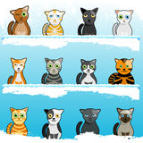 Cartoon cute cats Royalty Free Stock Images