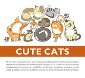 Cartoon cute cats and kittens pet playing vector flat poster. Funny cartoon cute cats and kittens playing poster. Vector flat design of funny cheerful kits and Stock Photo