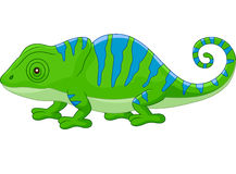 Cartoon cute Chameleon Stock Image