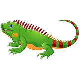 Cartoon cute Chameleon Stock Images