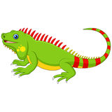 Cartoon cute Chameleon Royalty Free Stock Photos