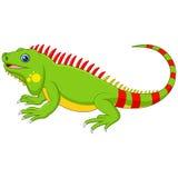 Cartoon cute Chameleon Royalty Free Stock Photos