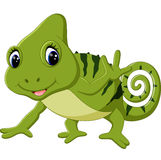 Cartoon cute Chameleon Stock Image