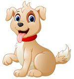 Cartoon cute dog Stock Photo