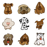 Cartoon cute dogs Royalty Free Stock Photography