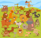 Cartoon cute dogs group Royalty Free Stock Image