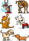 Cartoon cute dogs set. Cartoon Illustration of Funny Cute Dogs Set Royalty Free Stock Photography